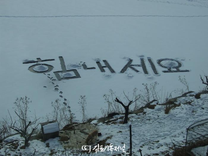 2011010318436254.jpg